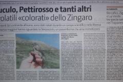 Campo Zingaro 2018